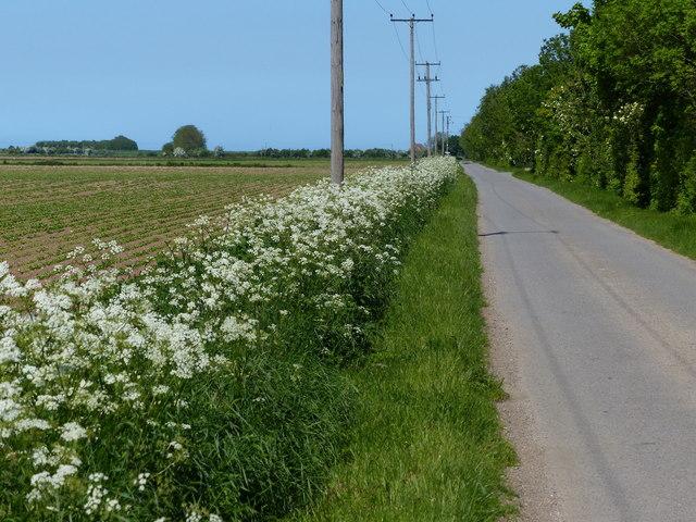 Lane leading to Ongar Hill