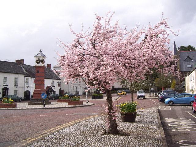 Twyn Square, Usk