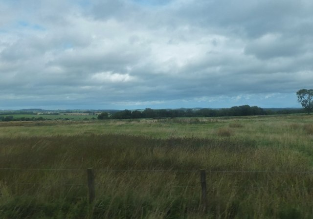 Rough grazing land to the northwest of Bolam West Houses