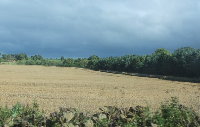 Arable land north of Scot's Gap