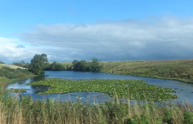 Rothley Lake East