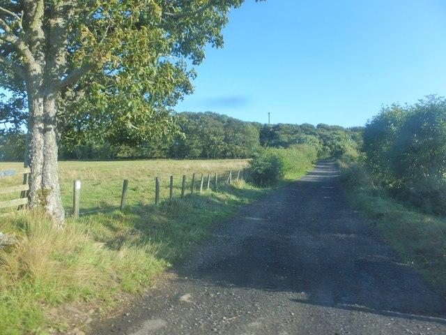 Track to Ewesley