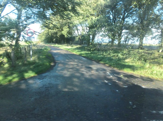 Leafy road from Coldrife