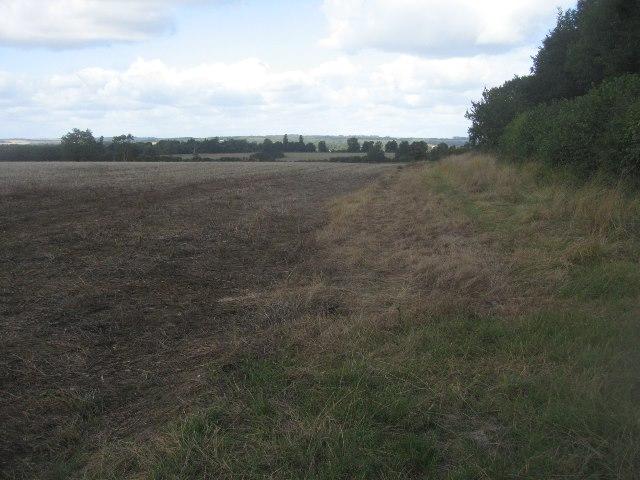 Fields west of Bull's Bushes Copse
