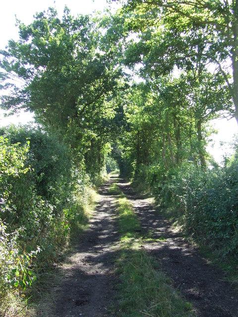 Toggs Lane
