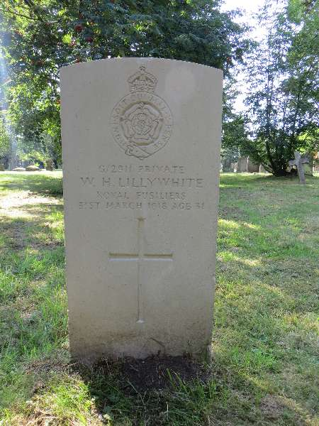 Private  W H. Lillywhite
