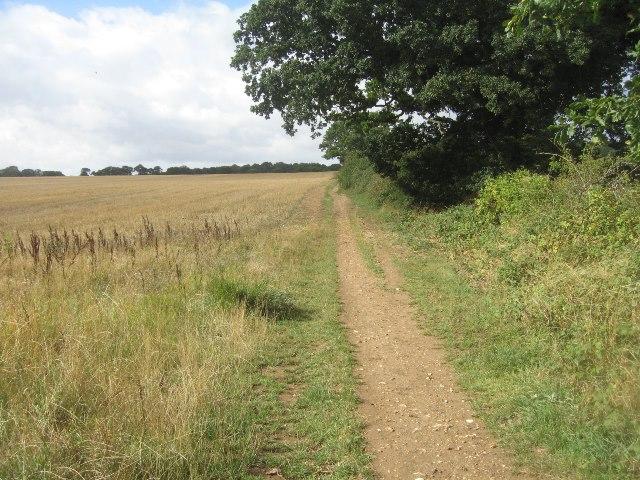 Footpath towards Pardown