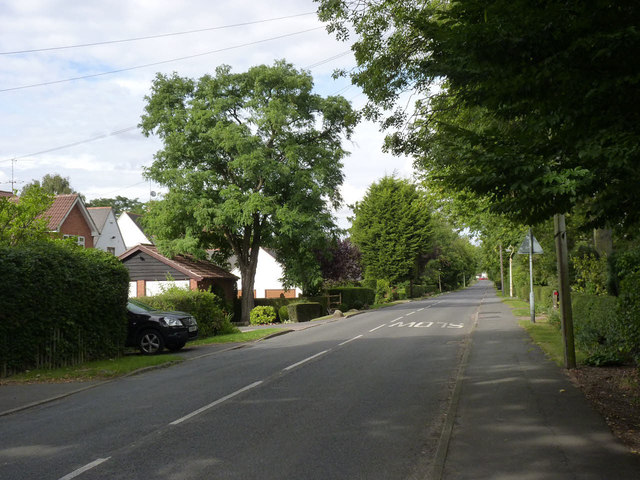 Rothley Plain