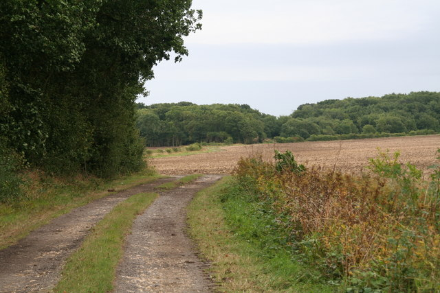View southwards from the Aby to Ailby Road