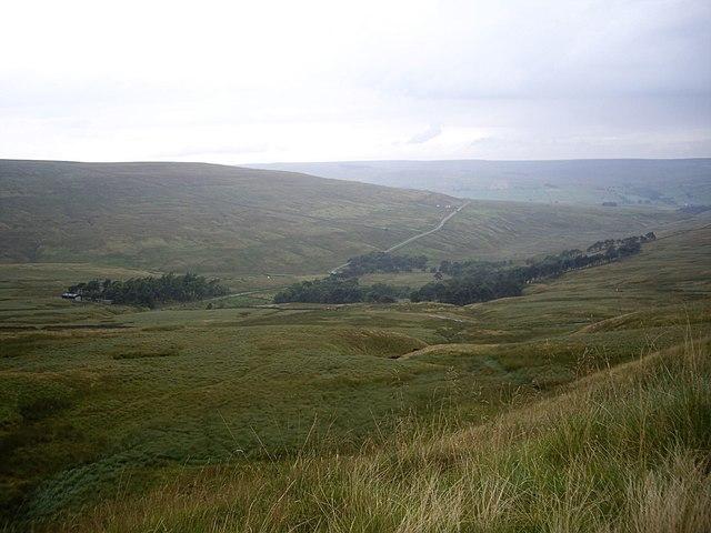View down to Swinhope Plantation