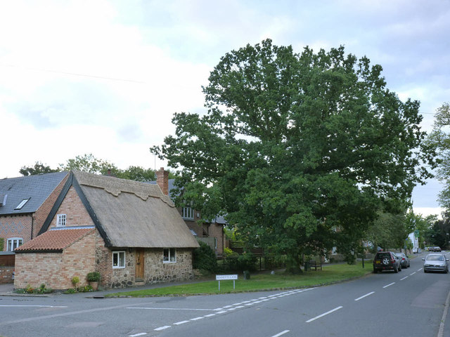 Cossington Coronation Oak, George V and Thatched Cottage
