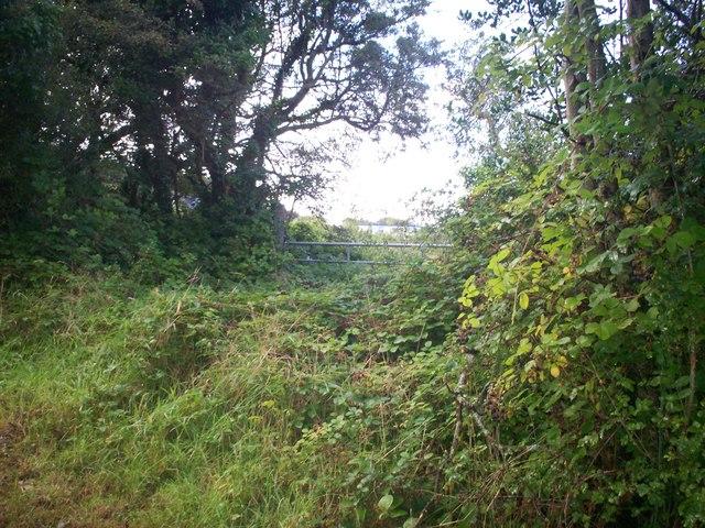 Gateway, Grassy Lane, Llanteg