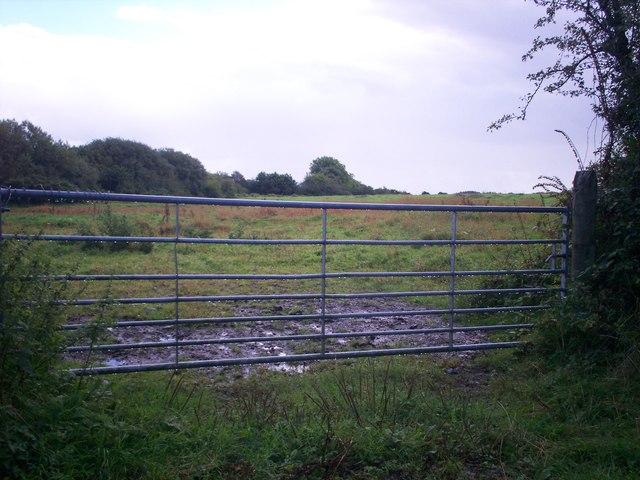 Gateway, Allen's Lane, Llanteg