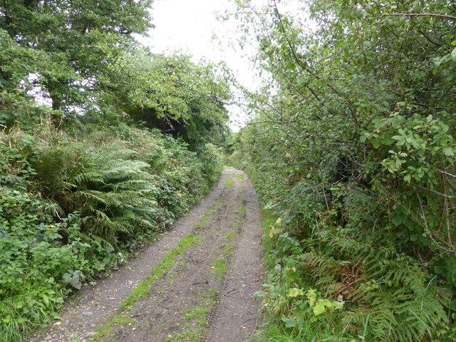 Lane near Tregarth