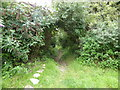 SW4936 : The start of the bridle path by David Medcalf