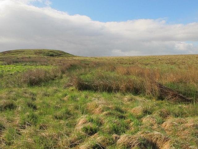 Moorland northwest of Blakeman's Law