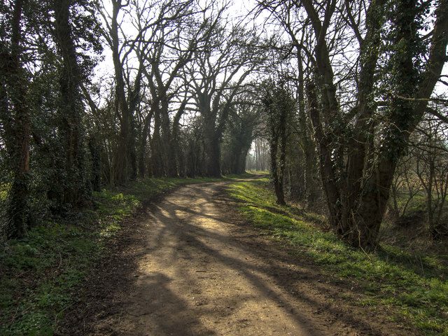 Icknield Way south east of Moulton