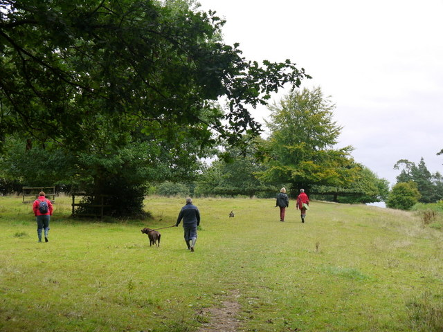 Dog-walking at Blickling