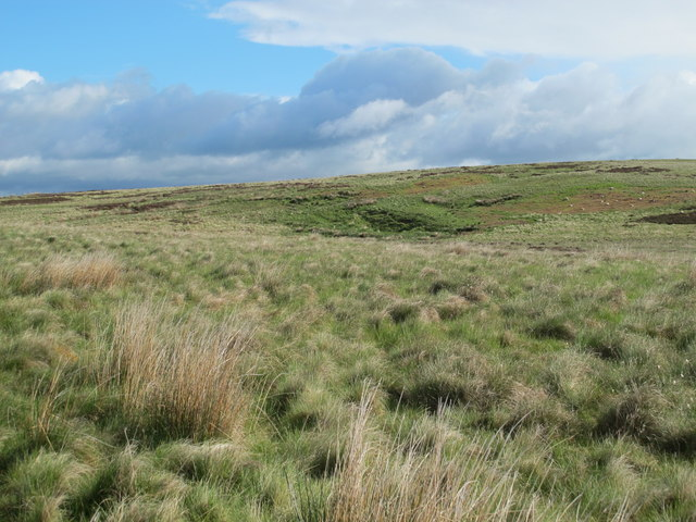 Moorland east of the Greenchester-Potts Durtrees road
