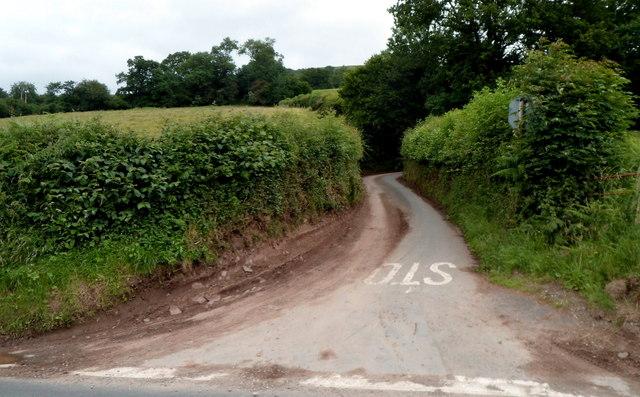 Lane from Tretower to Llandegeman