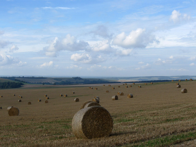 Bales, Sullington Hill