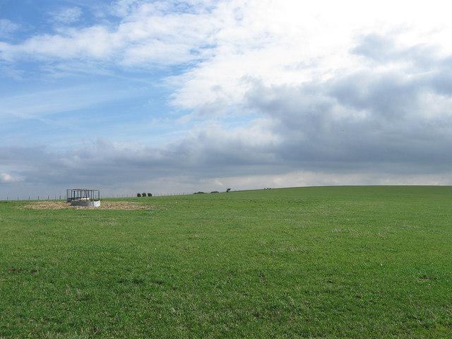 Barnsfarm Hill