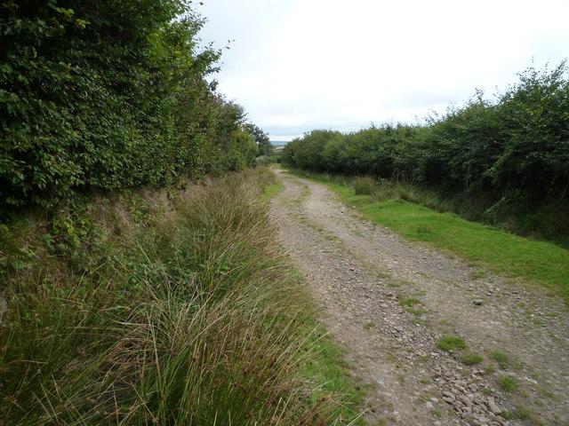 Bridleway above Exford
