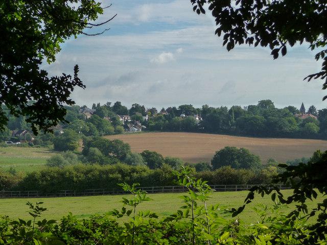 Farmland in Vicarage Farm, Enfield