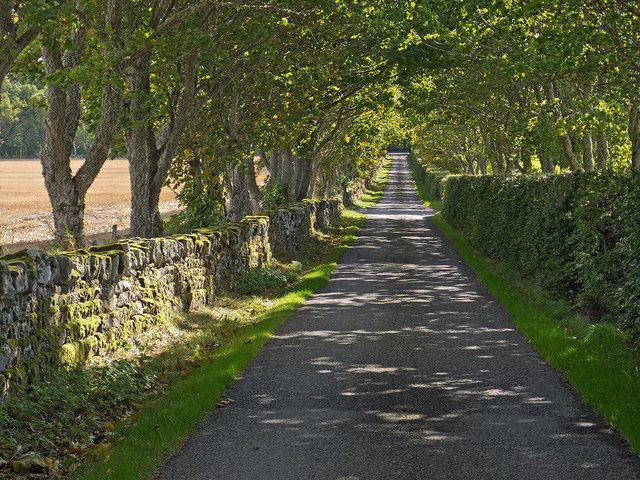 The straight road from Balnakyle Farm