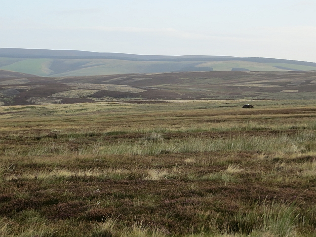 Moorland north of Wether Law