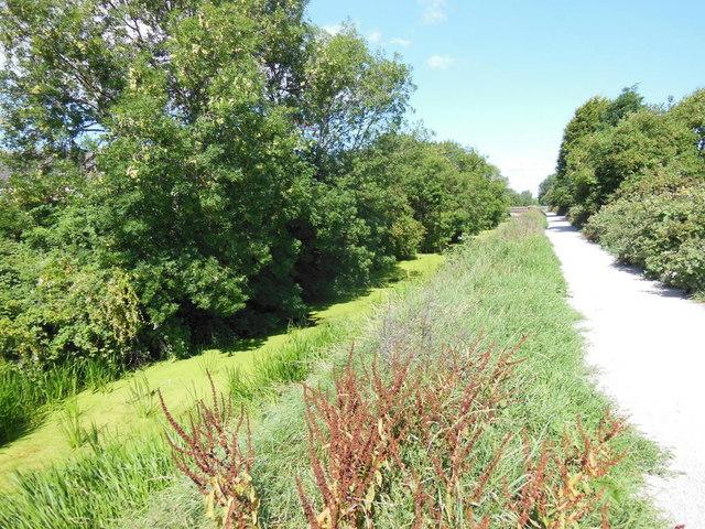 Barmston Drain towards Greenwood Avenue, Hull