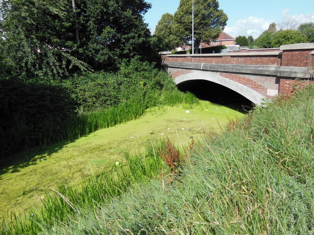 Barmston Drain at Greenwood Avenue, Hull