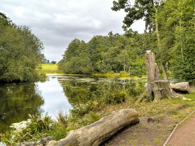Lower Lake, Nostell Park