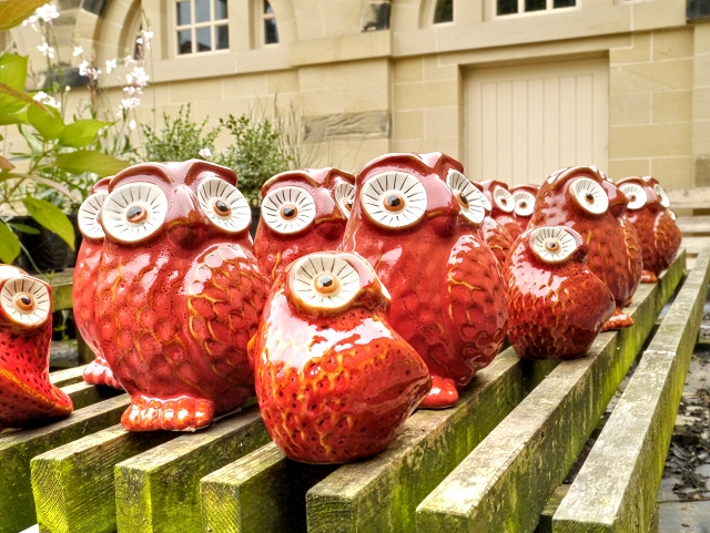 Red Owls at Nostell Priory