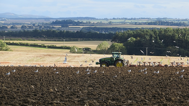 Ploughing, Unthank