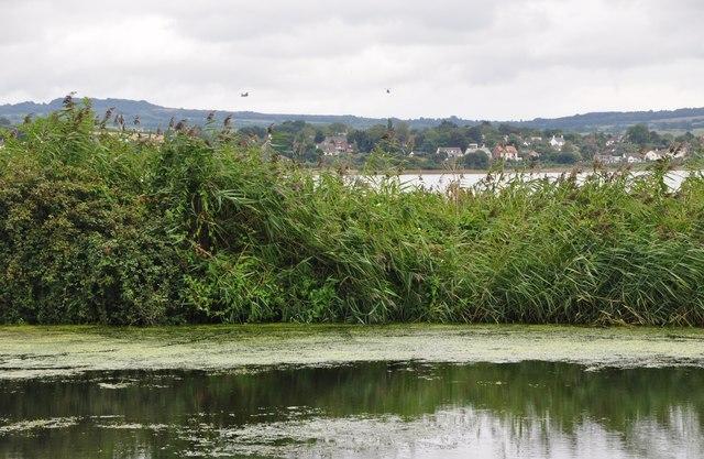 Teignbridge : The Exeter Canal