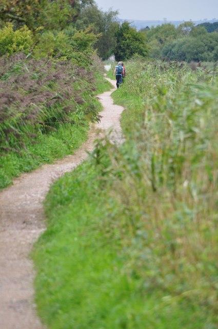 Teignbridge : The Exeter Canal Footpath