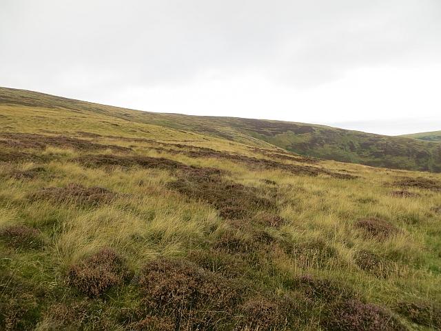 Moorland, Brown Knowe