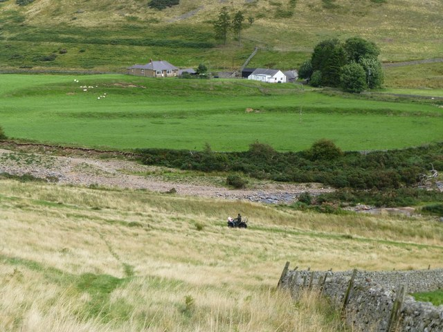 Shepherd with dogs on quad bike