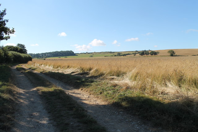 Track at the end of Mill Lane