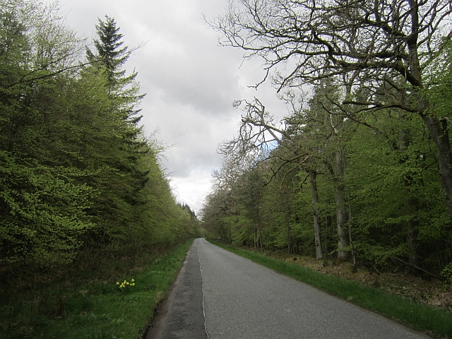 The Gask ridge road