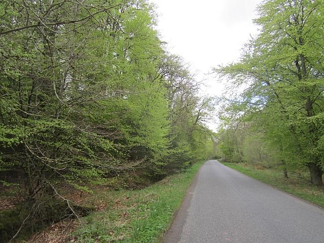 Roman road, Gask ridge