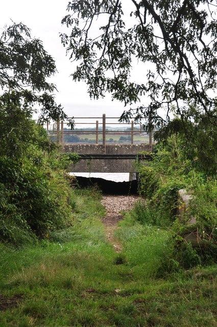 Teignbridge : Grassy Ditch