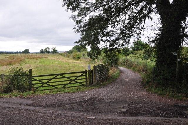 Teignbridge : Small Lane & Footpath
