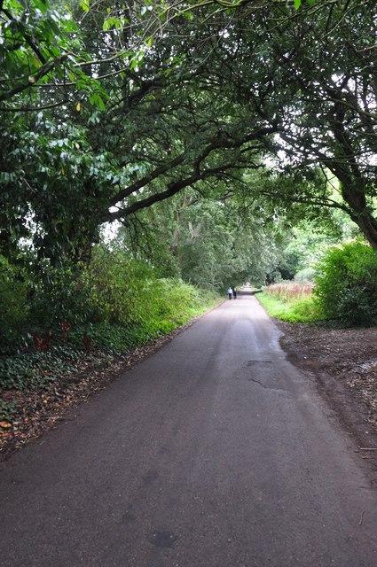Powderham : Church Road