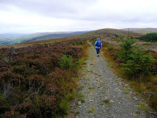 On the Southern Upland Way to Broomy Law