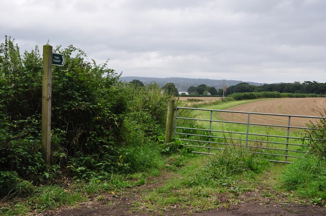 Teignbridge : Grassy Footpath