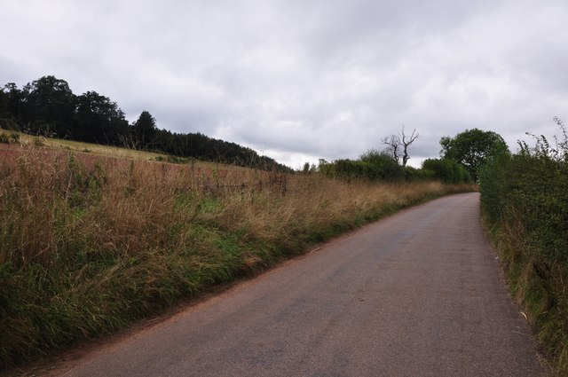 Teignbridge : Country Road