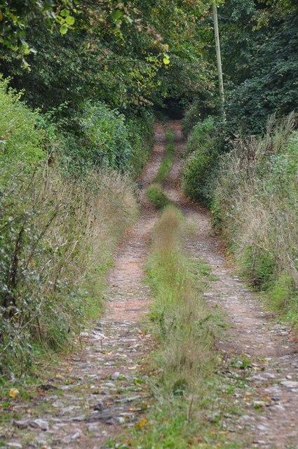 Teignbridge : Farm Track