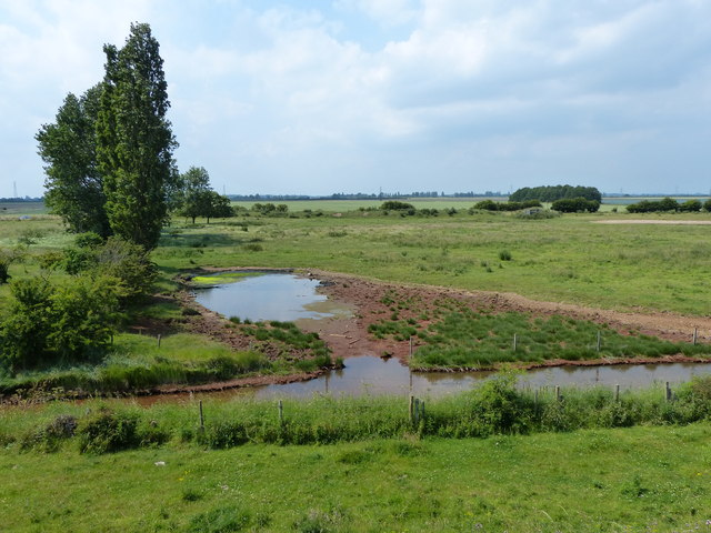 View inland across Kirton Marsh
